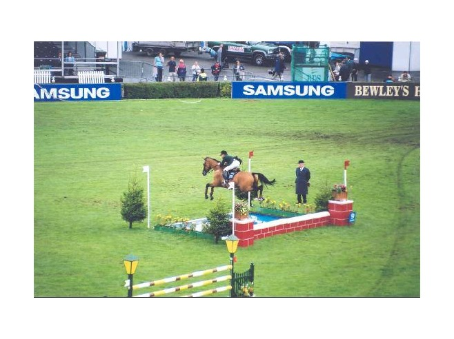 778140-Jumping_Competition_at_the_Kerrygold_Horse_Show_Dublin